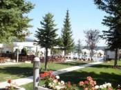Summer terrace