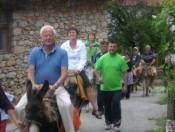 Donkey tour