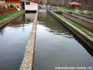 Hotel-Pond Sliv - Vinica